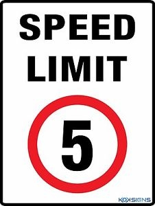 """""""5kph speed limit means Article 50 talks can accelerate"""""""